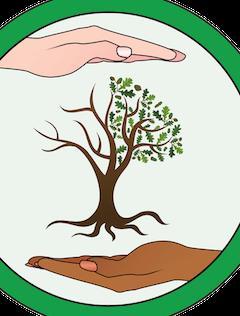 Découverte de l'association Conscience & Impact écologique