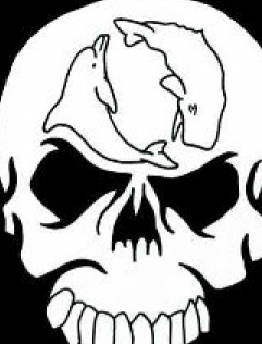 Sea Shepherd : l'association